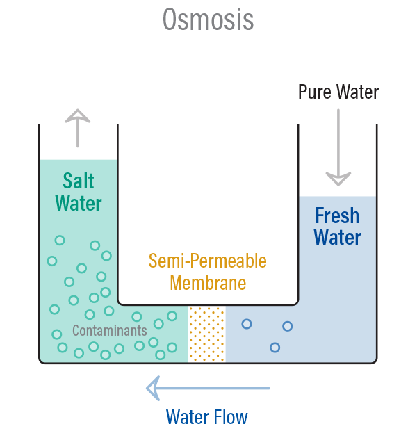 How Does Reverse Osmosis Work to Purify Water? 1