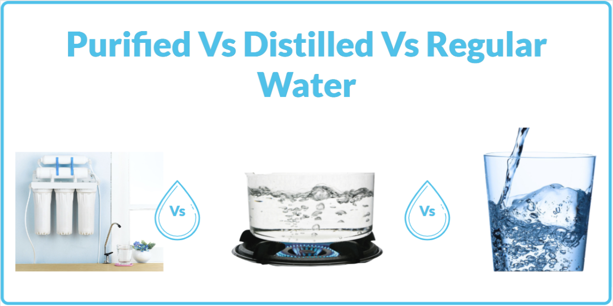 Purified vs Distilled vs Regular Water: What's the Difference? 1