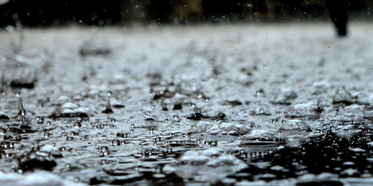 Can You Drink Rainwater, and Should You?